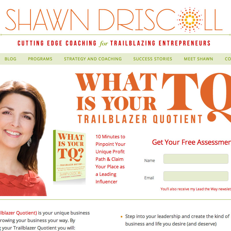 shawn-driscoll-website