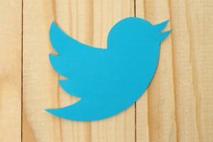 Twitter logotype bird