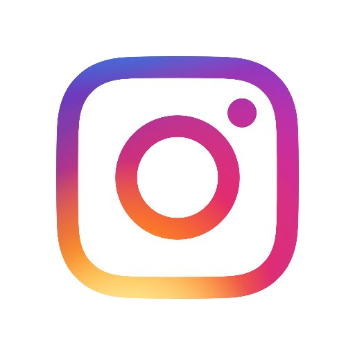 Image result for instagram logo for website link
