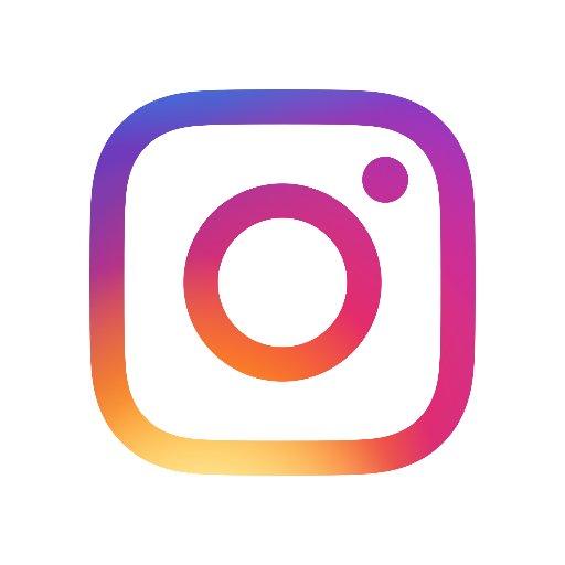 Image result for instagram logo for website link